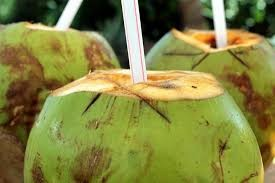 Coconut Water – Champion Hydrater